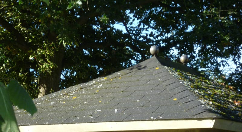 Free Offer Roof Shingles Tuin Tuindeco Blog