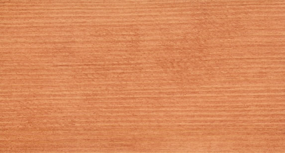 Red wood Stain 382601