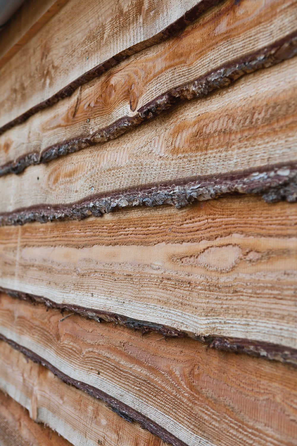 Natural larch cladding
