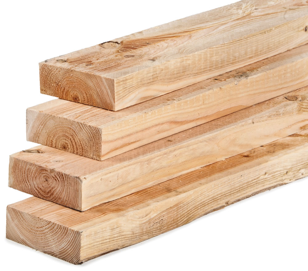 Un-dried and un-treated Larch Timber
