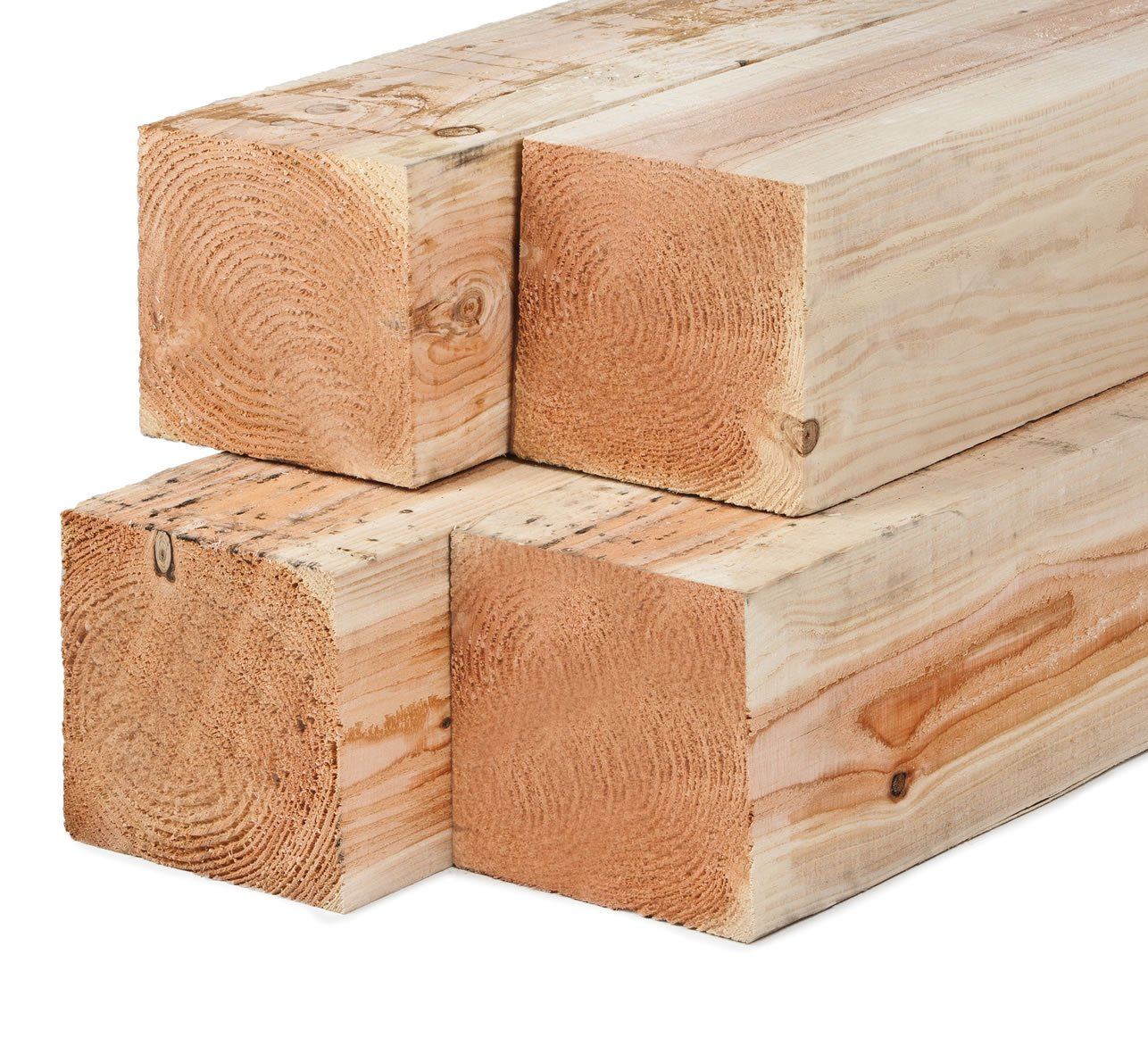 Larch undried timber posts