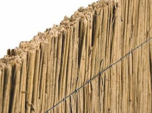 Reed Fence Panel
