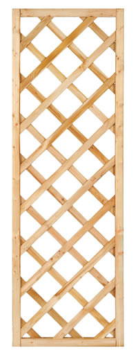 Framed Diagonal Trellis 60