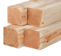 Larch Timber Posts - Dried