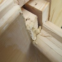 Using builders or carpenters